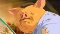 昏睡状態の豚